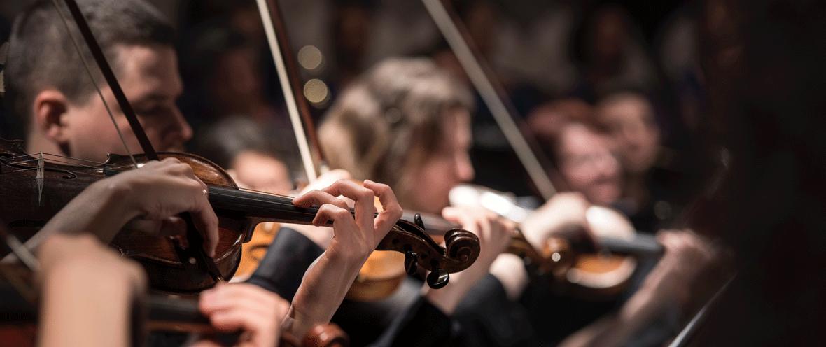 Männliche und weibliche Geigenspieler © Larisa Birta / Unsplash
